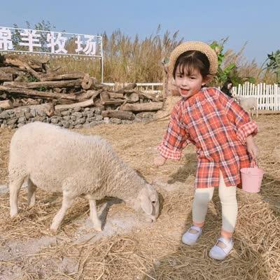 2020春季新款韩版女童格子长款衬衫裙长袖打底衫儿童春装上衣裙子